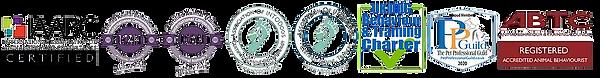 org logo transp bg.png