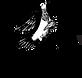 tipsybird_logo_b.png