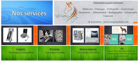 Services aux Vet'équins du Jat.jpg