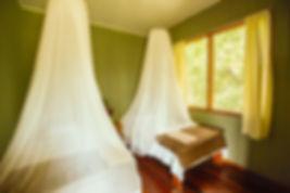 Congo Room.jpg