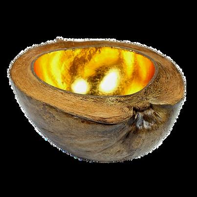 whole-natural-coconut-bowl-gold-centre_e