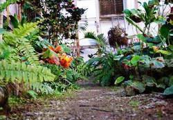 Conservatory--element59