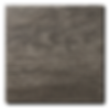 DS04N 600x600 - web.png