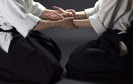 aikido-ntgfa-ivashkina-ruki.jpg