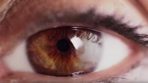EYE-Q VISION CARE