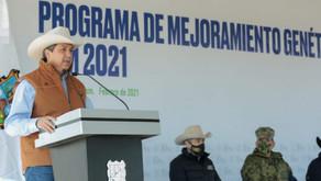 GOBIERNO DE TAMAULIPAS MANTENDRÁ LOS APOYOS PARA LOS PRODUCTORES GANADEROS.