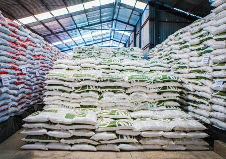 Inicia el gobierno federal el programa de Fertilizante 2021