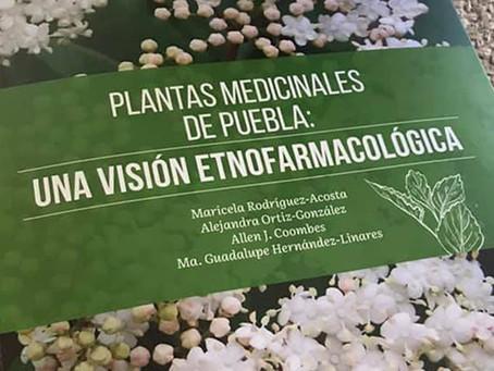 Jardín Botánico Universitario publica obra sobre plantas medicinales, su uso para el alivio de enfer