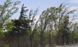 Protección Civil Estatal advierte rachas de viento de hasta 45 km/h en la entidad de Chihuahua