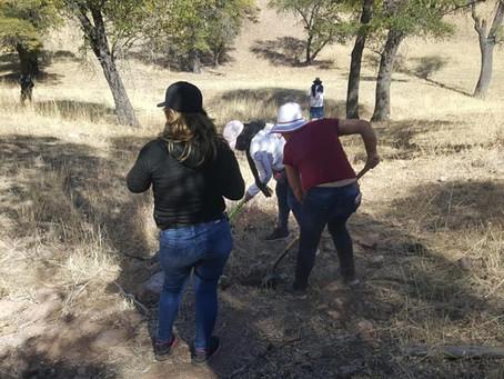 Colectivo encuentra en fosas clandestinas restos de 6 cuerpos en Guaymas, Sonora