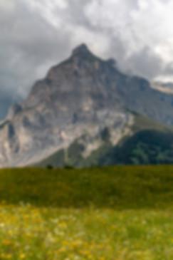 20180604-2018 France-Switzerland- 103010