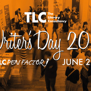 My Write-Up of The Literary Consultancy's Writers' Day (part three)