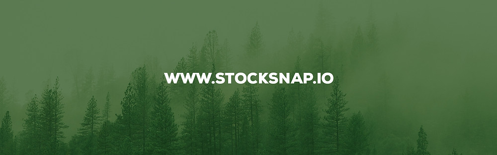 Stocksnap choice by DopeMotions