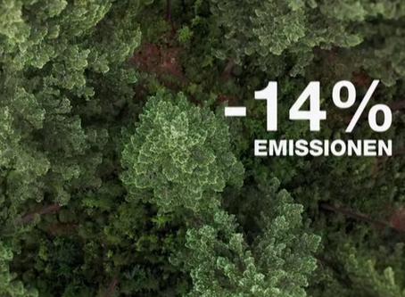 Wie kann Aufforstung zum Klimaschutz beitragen?