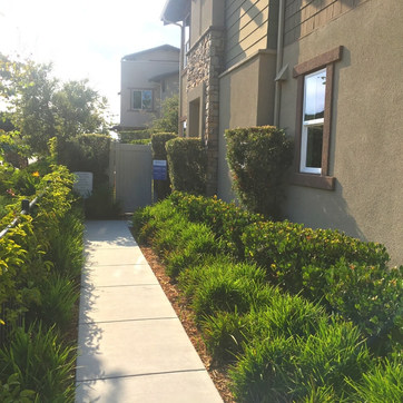 Blue Sage New homes.jpg