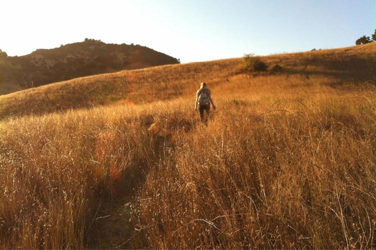 Savannah at Audie Murphy Ranch