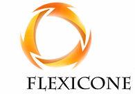 logo flexicone _l.jpg