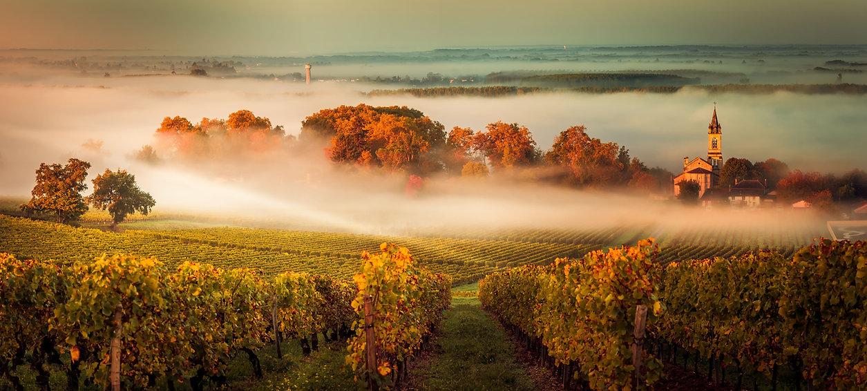 NY Italian Wein Frankreich.jpeg