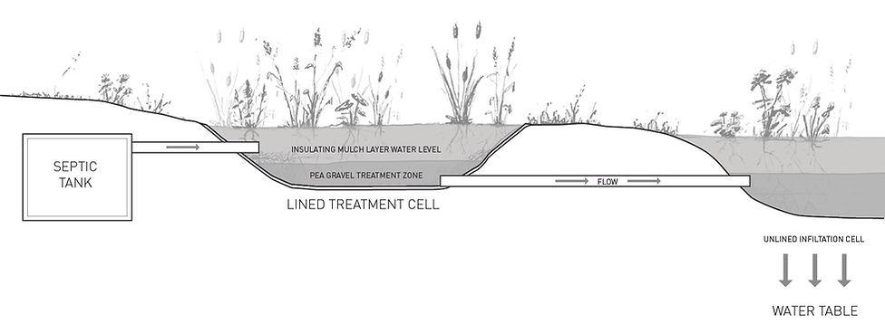 Jackson Meadow - Wetland Treatment System - Smitten Real Estate Group | Bill Smitten