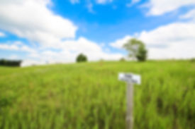 2561 Jackson Trail - Smitten Real Estate Group | Bill Smitten | Jackson Meadow