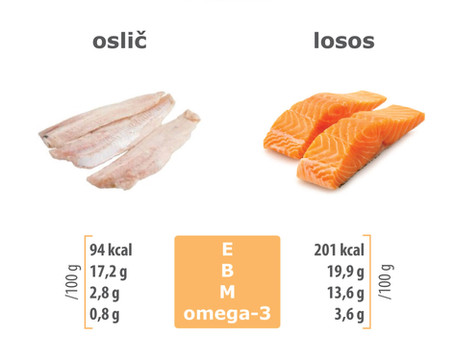 Ribe so odličen vir beljakovin