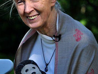Jane Goodall, Still Traveling the World and Speaking Up for Animals at 83