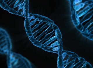 Do Genes Time One's Loss of Virginity?