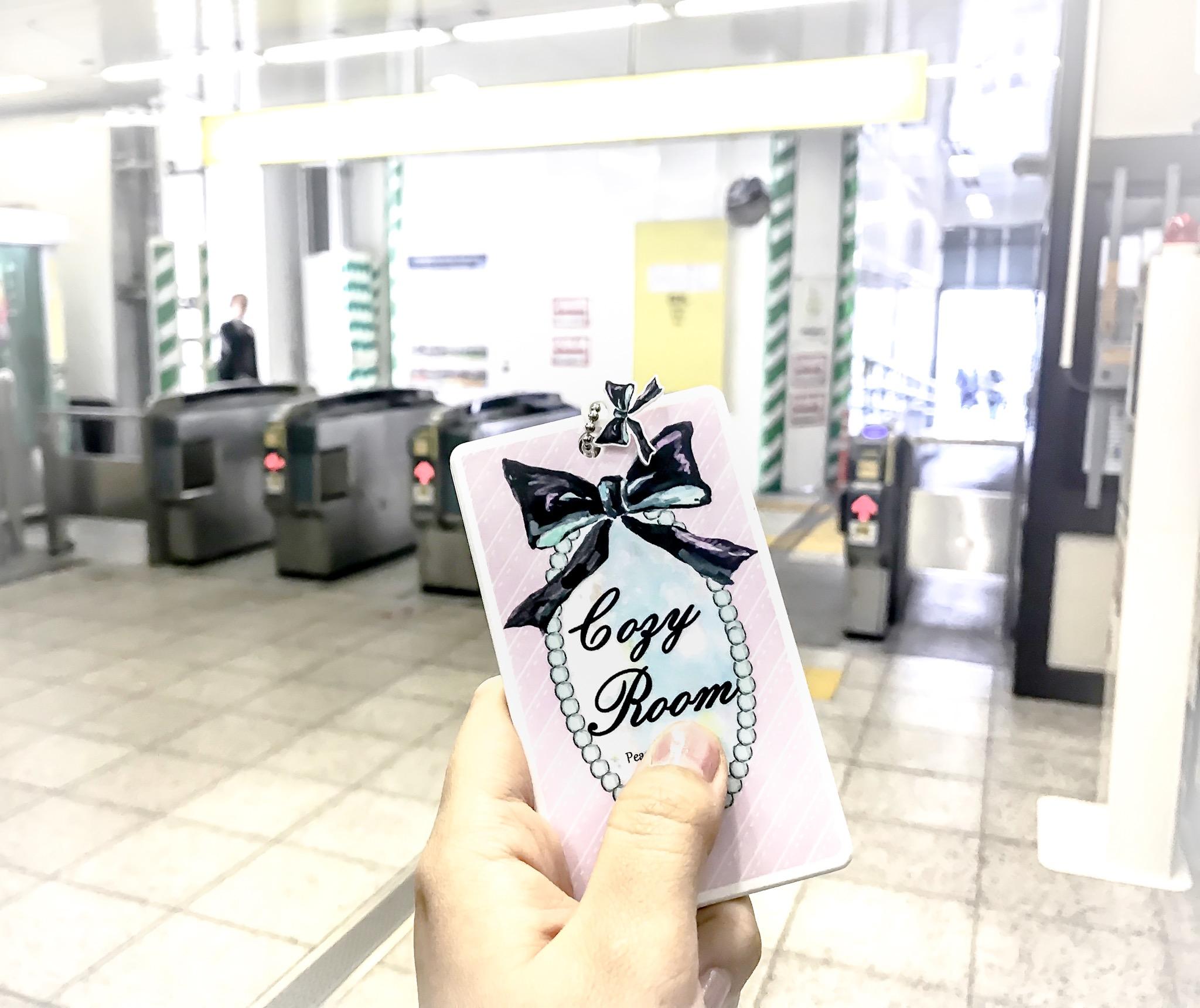 MiyukiAcryl_Pass Case4