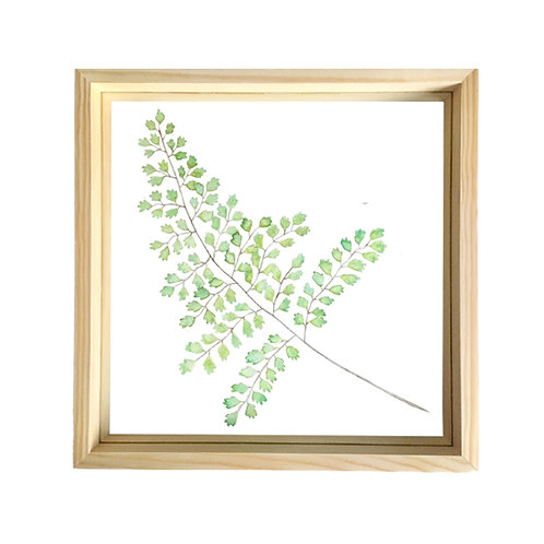 Watercolour Cut Out - Maiden Hair Fern