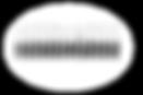 DarkEyedJunco_NameTage_NoOutline.png