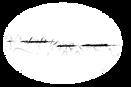 MountainChickadee_NameTage_NoOutline.png