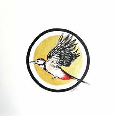 Ornithology addict nº 127