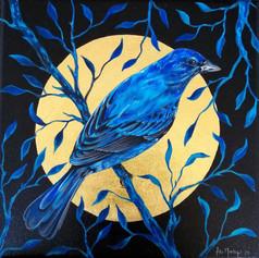 Ornithology addict #103