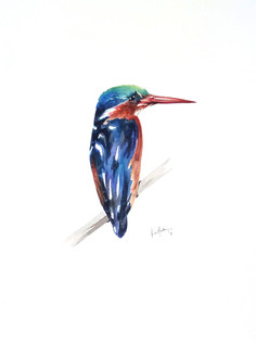 Ornithology addict 12