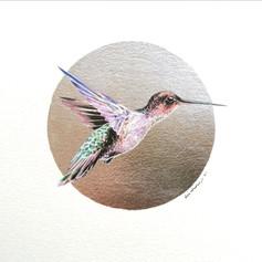 Ornithology addict nº144