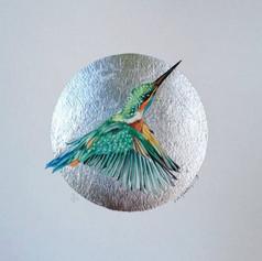 Silver ornithologu addict #12