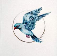 Ornithology addict #97