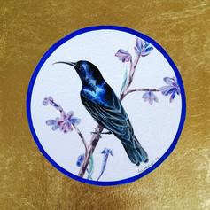 Ornithology addict #110