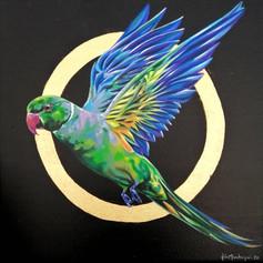 Ornithology addict #102