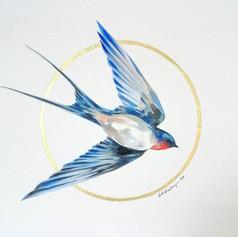 Ornithology addict #74