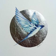 Silver ornithology addict #1