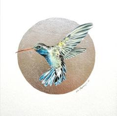 Ornithology addict nº143