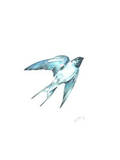 Ornithology addict 15