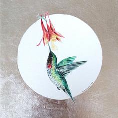 Ornithology addict #108