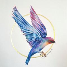 Ornithology addict #71
