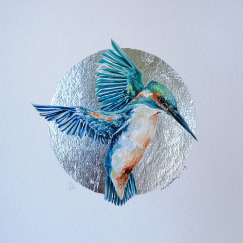 Alcedo atthis nº 11__Watercolour and sil
