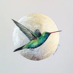 Silver ornithology addict #5