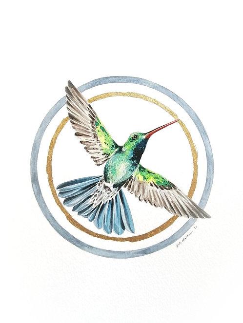 Ornithology addict nº148