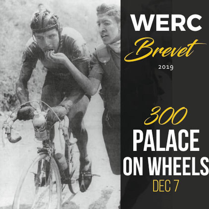 WERC Brevets / Palace on Wheels 600km