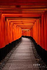 Fushimi_Inari